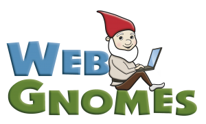 SEO Professional - Web gnome with laptop