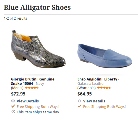 Blue alligator shoes landing page example
