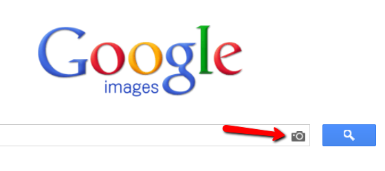 Google Images camera icon